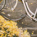 「今まで確認してなかったの?」3週間前、妹が自転車を盗まれた。先週新しい自転車を購入したんだけど、近くのコンビニで自転車が見つかった。そのコンビニは…