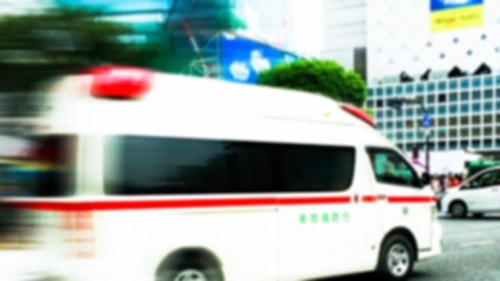 「子供がひまわり欲しいとせがんだもので」特に被害は出なかったんだけど明け方の5時に救急車のサイレンでたたき起こされた…